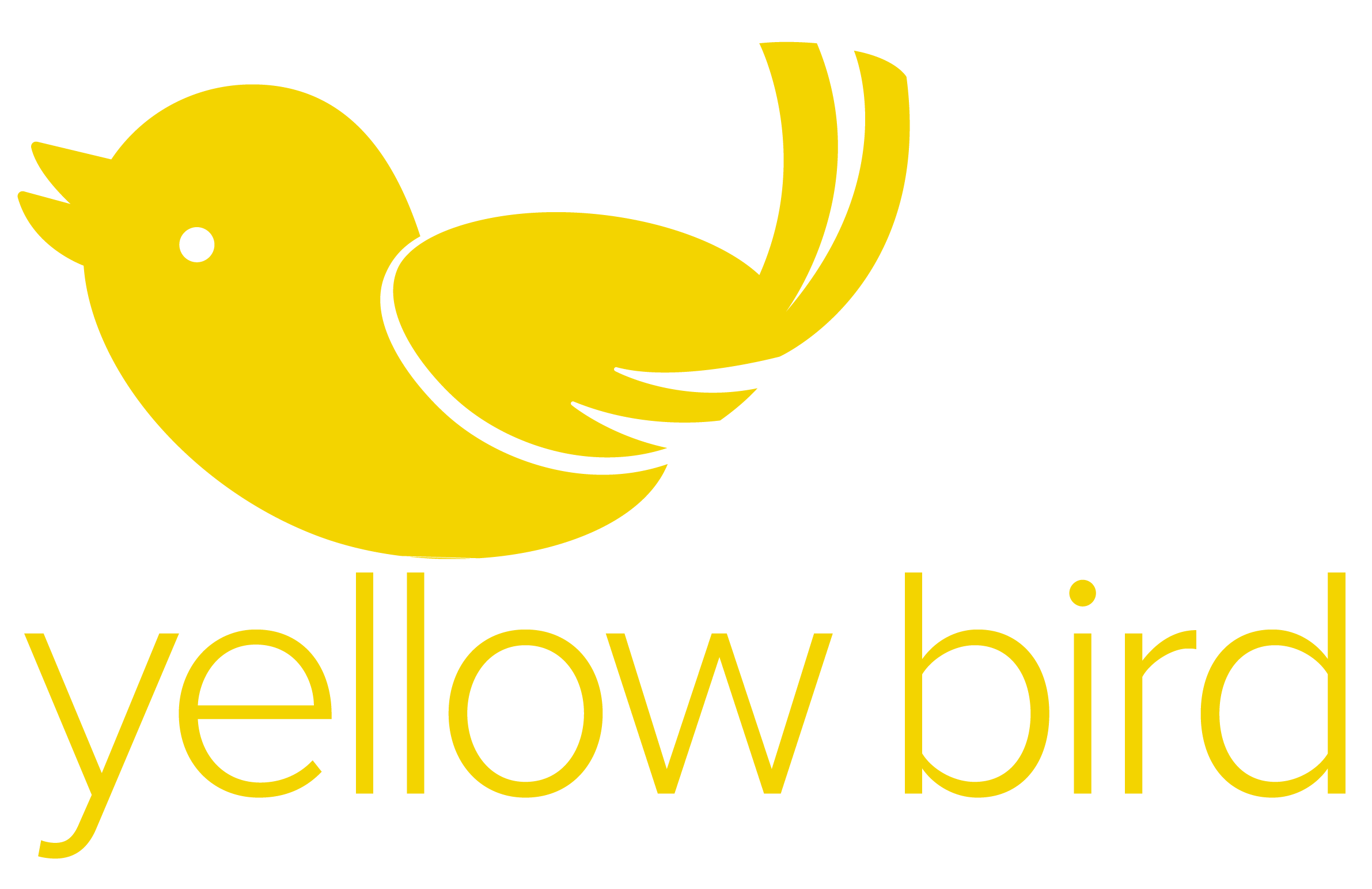 Yellow Bird Marketing & Communications, Derbyshire